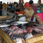 Ikan Tuna Di Pasar Basah Semporna Sabah