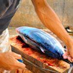 Ikan Tuna Di Pasar Semporna Sabah