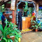 Pendaftaran Sebelum Masuk Ke Kawasan Tagal Kampung Luanti Ranau