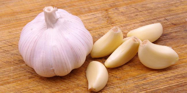 bawang putih atau Garlic
