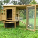 Sangkar ini diperbuat daripada kayu dan sesuai untuk dipelihara ayam.