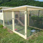 Sangkar ini sangat praktikal dan mempunyai ruang yang optimum untuk membela 6 pasang ayam.