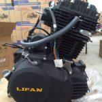 Enjin Lifan starter 250 timing chain.