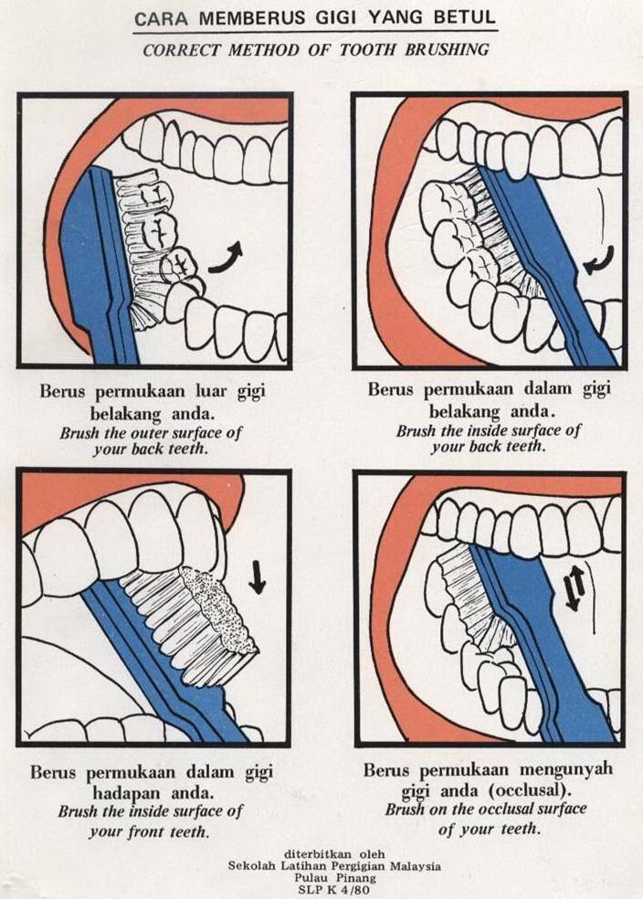Cara Memberus Gigi Dengan Betul