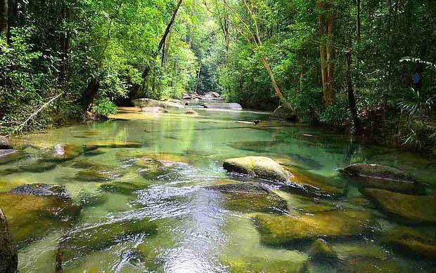 Hutan Lipur