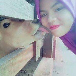 Seorang gadis berselfie dengan lembu.