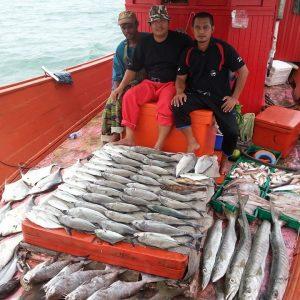 Bot Pancing 38 Sedia Khidmat Sport Fishing Terbaik Pantai Timur