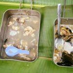 Daging Ular Sawa Dimasak