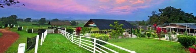 Uk Farm Johor