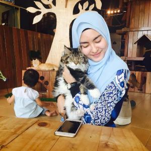 Gambar Penyanyi Baru Wani Hasrita Dengan Kucing