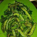 Makanan Eksostik Ulat Beluncas