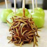 Makanan Eksostik Ulat Pokok