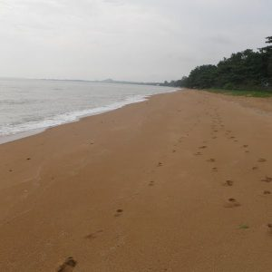 Pantai Padang Kemunting