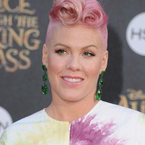 Pink Singer 2017 Photo