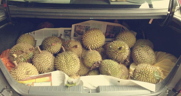 Hilangkan Bau Durian Dalam Kereta
