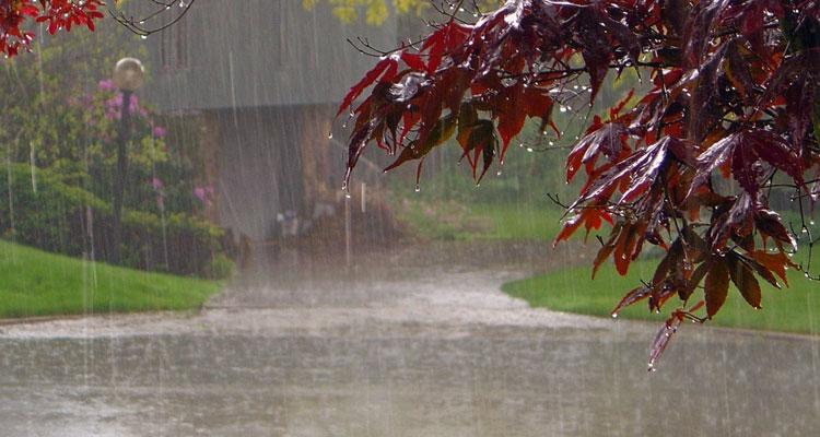 Persediaan Musim Hujan