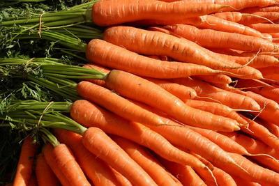 Lot Of Carrots