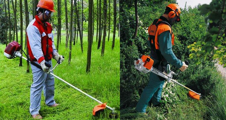 Tips Menghidupkan Mesin Rumput Sandang Dan Panduan Menggunakan Mesin Rumput Sandang Buat Beginner!