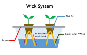 Wick System Planting 4