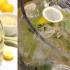Air Soda Herbs Yang Sedap! Ini Bahan-Bahan Dan Cara Menyediakannya!