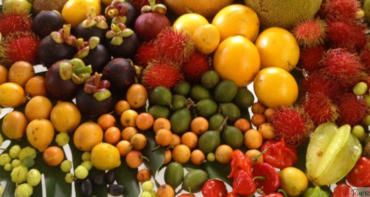 Permalink to Cara Memeram Buah-buahan & Senarai Buah-buahan Yang Boleh Dipetik Hijau, Diperam Sebelum Dinikmati