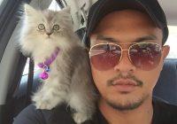 Saharul Ridzwan mempunyai hobi membela kucing.