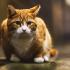 Tanda-tanda Kebaikan Bakal Anda Perolehi Jika Didatangi Kucing Jalanan