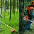 Tips Menghidupkan Mesin Rumput Sandang & Panduan Menggunakan Mesin Rumput Sandang Buat Beginner!