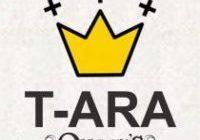 T Ara Queens