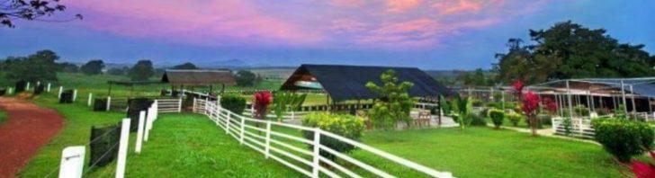 Permalink to Alami Percutian Agrotourism Bersama Keluarga di UK Farm Resort Kluang, Johor